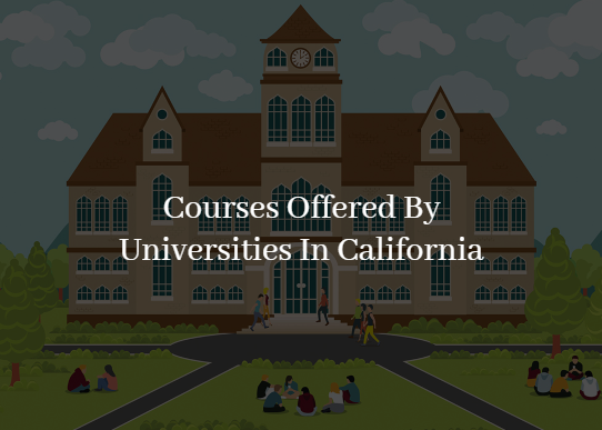 Field Of Studies Offered By California Universities Over The Past 110 Years
